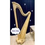 2nd hand Salvi Ana harp