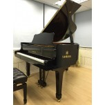 Summer Intensive - Piano &Theory 4-5yrs old