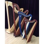 Individual Trial Lesson - Lever Harp (Beginners)
