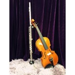 Individual Lesson - Flute or Violin or Cello