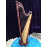 SOLD - 2nd hand Salvi Ana Lever Harp
