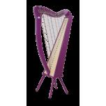 Camac Bordic 27 Strings