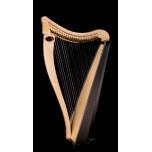 Dusty Strings - Ravenna 26