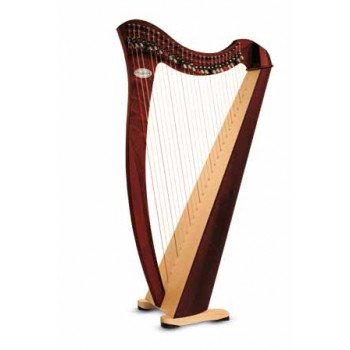 Harp Rental - Salvi Juno 27 strings