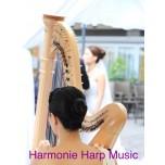 Live Music - Harp Solo