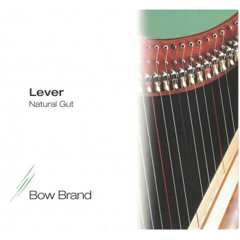 Complete String Set  - Salvi Mia Lever Gut Version (34 strings)